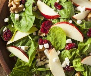 Gourmets Lyon plateau repas Vegan